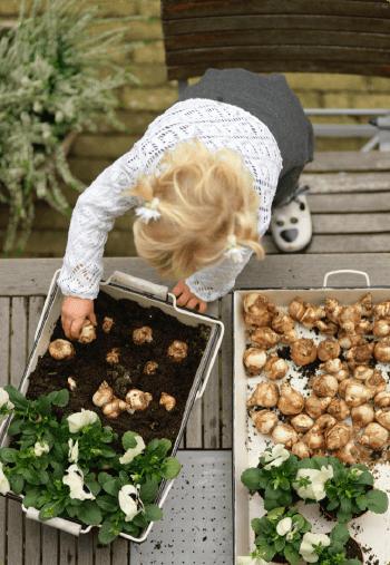 Involve grandchildren in the gardening